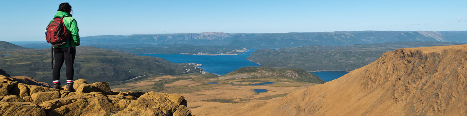 Overlooking Woody Point from Tableland Mountain